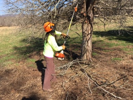 022017-chainsaw-on-a-stick-with-rebecca-g