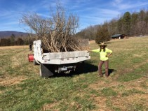 022017-loading-branches-to-be-taken-to-the-stump-dump
